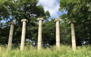 Learn how to resize columns, rearrange them, and even add and remove columns | AustinMacWorks.com